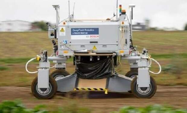 Робот борется с сорняками, забивая их назад в землю (1 фото + 2 видео)