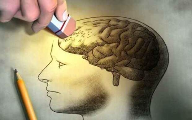 Как наш собственный мозг над нами издевается