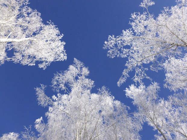 31 фото любителям природы. Просторы Алтая. Летом и зимой