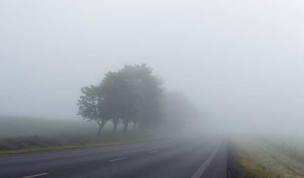 Утром туман, днем жара: прогноз погоды вРостовской области навторник