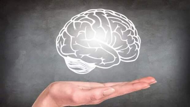 Мозг — это душа, компьютер или нечто большее?