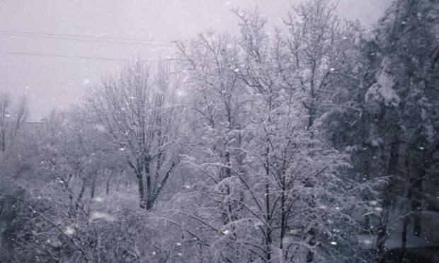 На Кубани объявили экстренное предупреждение из-за снегопада