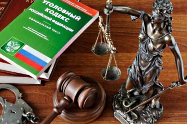 Полиция просит суд арестовать девушку, сбившую детей на переходе в Москве
