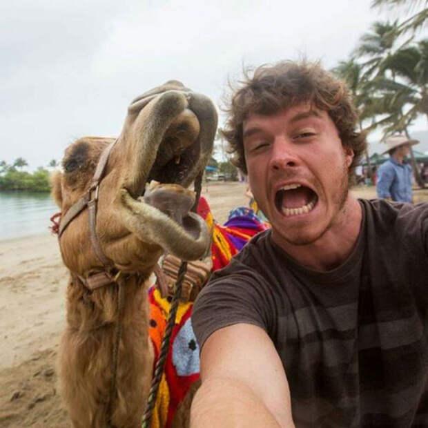«Доктор Дулиттл» рассказал, как сделать селфи с животными