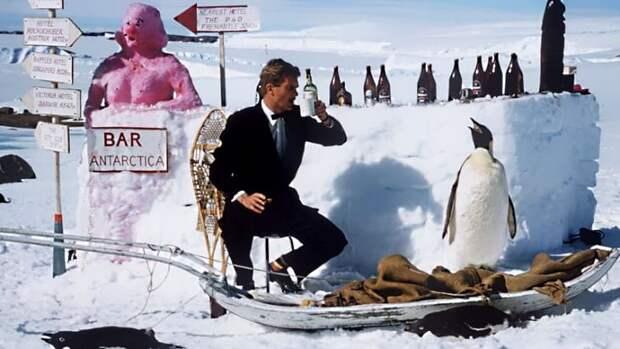 """Восстановление антарктического морского льда нарушает """"картину Глобального потепления"""""""