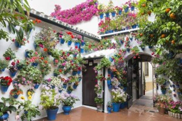 patios-de-cordoba-1520509_1280