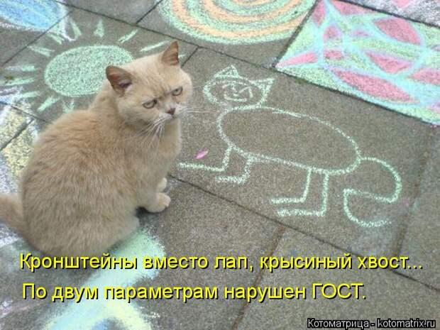 Апрельская котоматрица :)