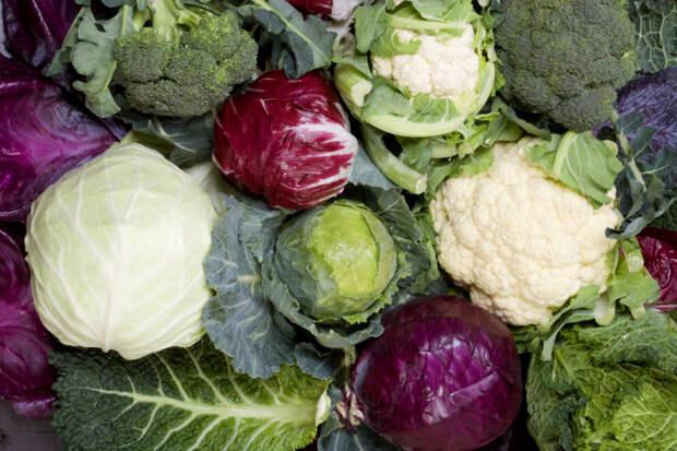 Продукты, способные заменить «чудо-средства» для похудения
