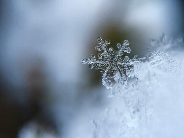 Небольшой снег и облачность ожидаются в Удмуртии в понедельник