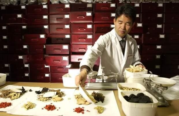 История гриба началась в Китае. |Фото: oncc.ru.