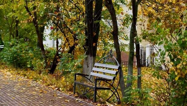 5 октября станет самым холодным днем на текущей неделе в Московском регионе