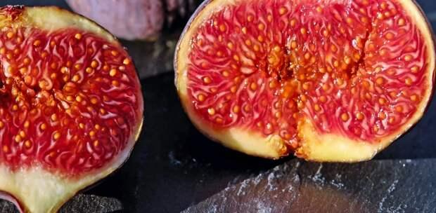 В Крыму на базе одного из университетов займутся выращиванием инжира и киви