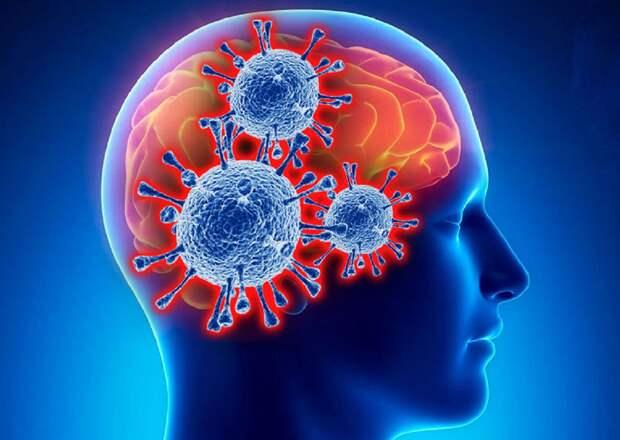 Ученые доказали, что коронавирус повреждает мозг человека