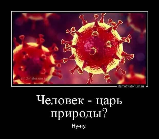 Демотиваторы про коронавирус с надписями. Подборка chert-poberi-dem-koronavirus-chert-poberi-dem-koronavirus-56320614122020-5 картинка chert-poberi-dem-koronavirus-56320614122020-5