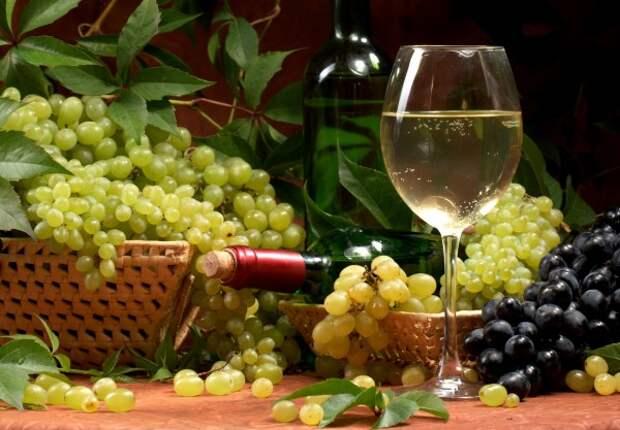 Острые проблемы отрасли виноградарства и виноделия в Крыму