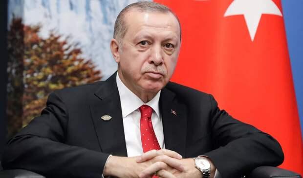 Эрдоган громко опозорился, назвав число уничтоженных в Сирии «Панцирей»