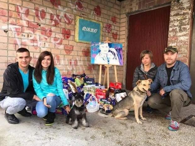 «Не нужно цветов, дарите корм!» Молодожены собрали 130 килограммов корма для бездомных собак!