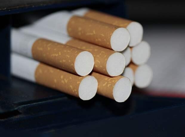 Более 3 тыс пачек сигарет уничтожат в Удмуртии