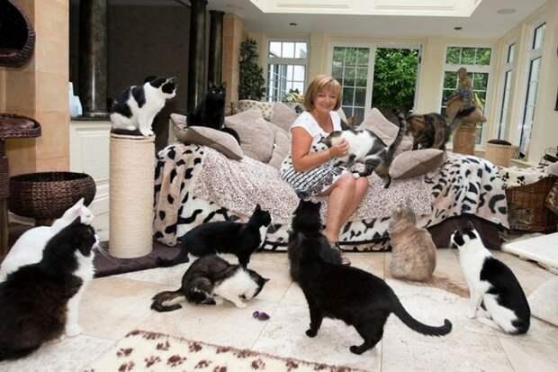 У каких женщин заводятся те самые сорок кошек?