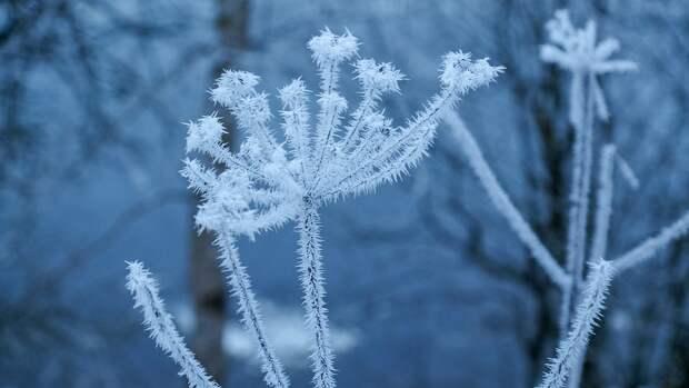 Аномальным холодом пугают регионы России