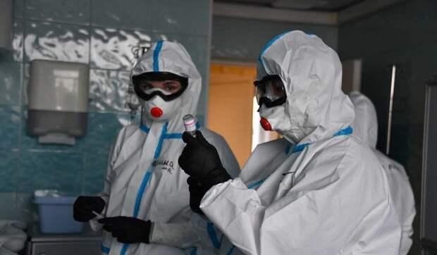 В России за сутки коронавирус выявили у 9,6 тысячи человек