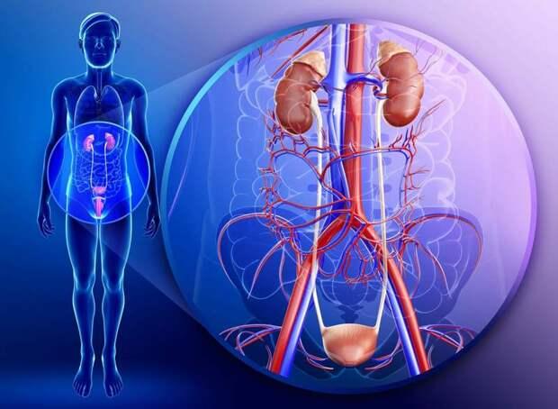 Боль в области таза: 18 возможных причин