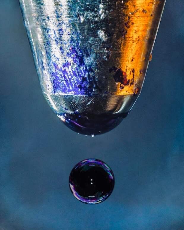 24 снимка, как наглядные примеры, что иной раз в капле росы может уместиться целая Вселенная