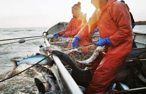 Франция угрожает Великобритании санкциями из-за рыболовной политики