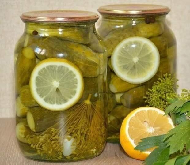 Маринованные огурчики с лимоном — вкуснятина!