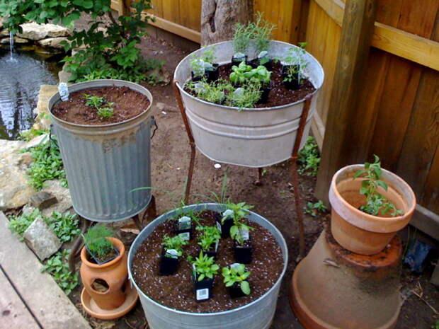 Контейнеры мобильны и удобны для посадки капризных растений. /Фото: viaorganica.org