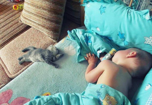kids-animals-2.jpg