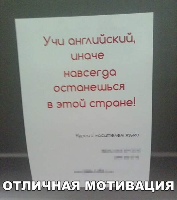 Подборка ржачных и смешных фотографий с надписями со смыслом