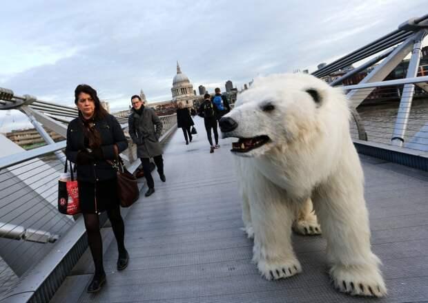 0017 По улицам медведя водили