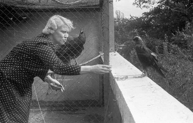 Антонина Жабинская кормит птиц в зоопарке.