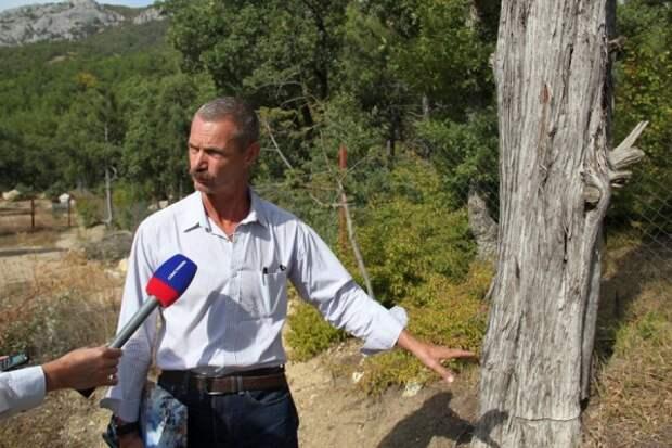 «Командная проблема» для Севастополя