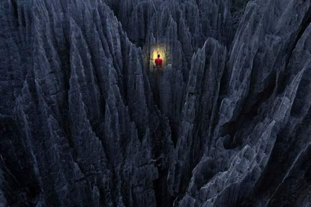Национальный парк Бемараха, Мадагаскар: рано утром альпинист измеряет острые как бритва скалы Гранд Цингис, самого большого в мире леса известняковых иголок. Фотография: Марсель ван Остен