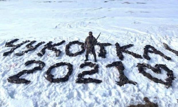 На браконьерском фото с «Чукоткой» из 200 убитых гусей оказался депутат-единоросс