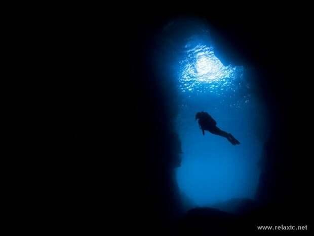 underwater_051