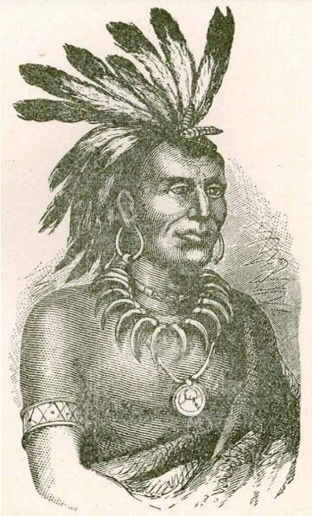 Один из командующих войсками индейцев на Вабаше - Маленькая Черепаха. Обратите внимание на количество перьев на голове индейца