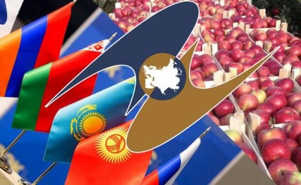 ДНР начинает работу по таможенным правилам ЕАЭС на ввозимую продукцию
