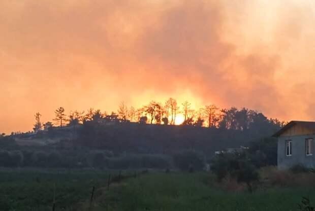 Лесной пожар потушили в Бодруме