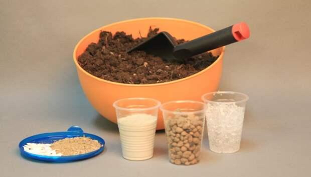 Как приготовить качественный грунт для рассады?