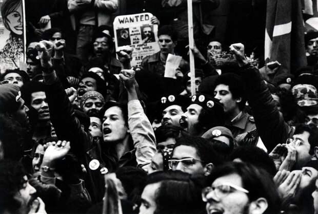 Социальные конфронтации в США 1960-х - 1970-х годов: Леворадикальная Партия черных пантер   (33)