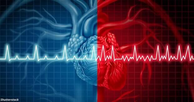 Сердце работает «странно»: когда расслабиться, а когда — бежать к врачу