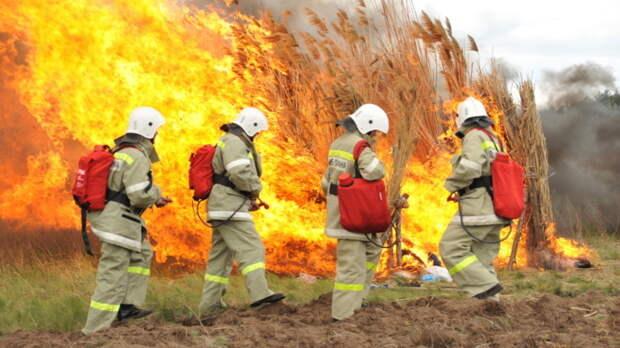 Особый противопожарный режим ввели на территории Ростовской области с 1 по 10 мая