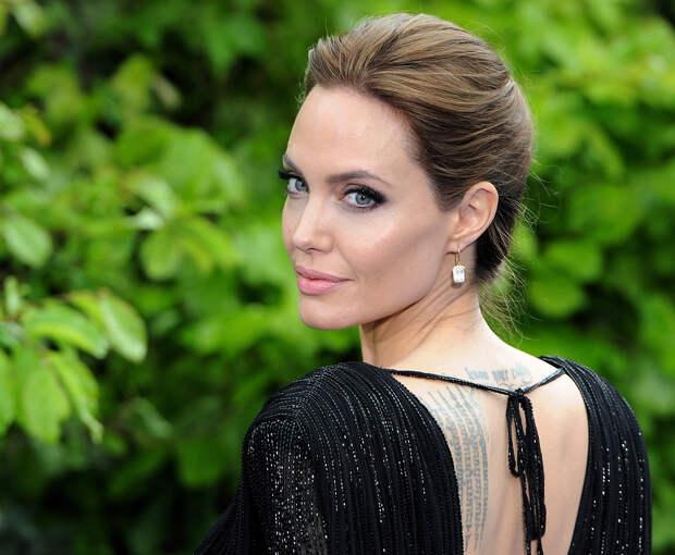 Анджелина Джоли занялась пчеловодством на юге Франции