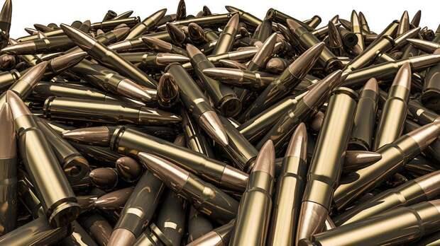 50 тысяч снайперских патронов НАТО для жителей Донбасса