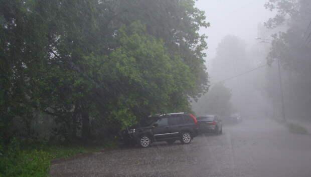 «Желтый» уровень опасности из‑за грозы в Московском регионе продлили до вечера 12 июня