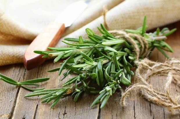 10 ароматных трав, которые придают блюдам пикантность и делают вкус ярче