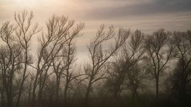 На Крым опустятся туманы: прогноз погоды на вторник